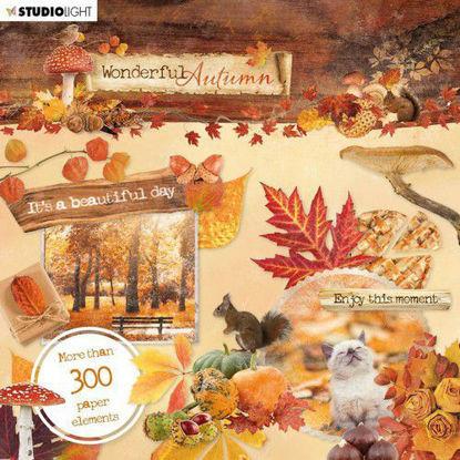Studio Light Die Cut Book Wonderful Autumn nr.664