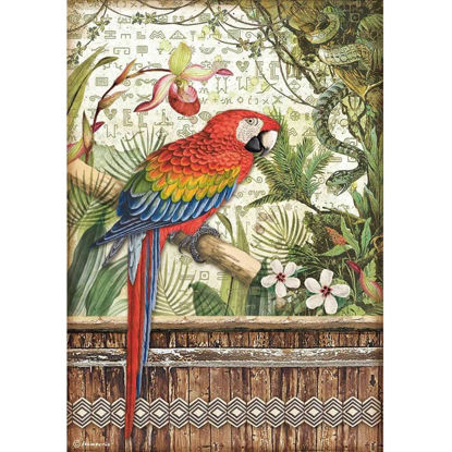 Stamperia Rice Paper A4 Amazonia Parrot